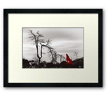 Red wolf Framed Print