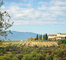 Typical Tuscan hill by Antonio Gravante