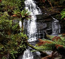 Triplet Falls, Great Otway National Park by Ferenghi
