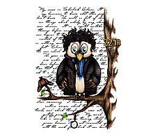 Crazy Owl - Sherlock Holmes inspired Photographic Print