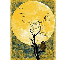 yellow night Photographic Print