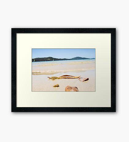 Oh To Be Washed Ashore Framed Print