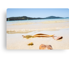 Oh To Be Washed Ashore Canvas Print