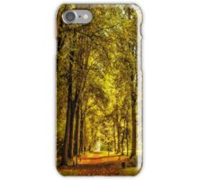 Woodland Pathway iPhone Case/Skin