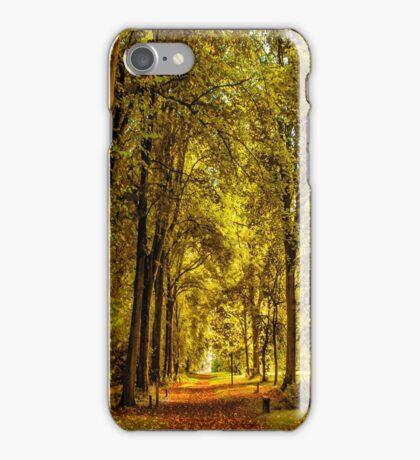 Woodland Pathway iPhone Case/Skin