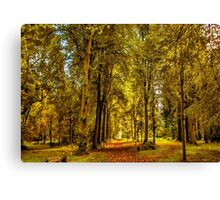 Woodland Pathway Canvas Print