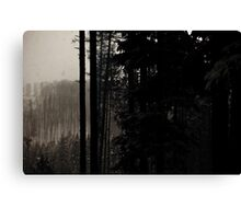 Winter, forest, mountains Canvas Print