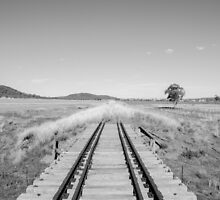 End of the Line - Black & White by Aaron Hill