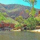 Ormiston Gorge by Penny Smith