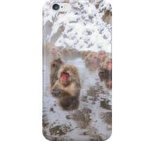 Snow Monkeys iPhone Case/Skin