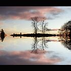 Reflections by Forfarlass