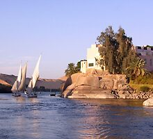 Felucca Ride by dunawori