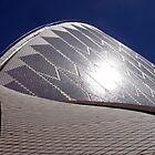 Roof Tiles by John Dalkin