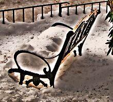 Cold Bench by LudaNayvelt