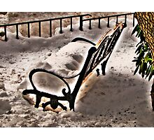 Cold Bench Photographic Print