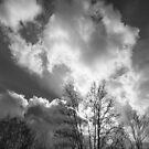 Sky Drama by Lynn Gedeon
