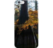 Cypress Tree Delight iPhone Case/Skin