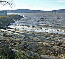 Waves on the Hudson River, West Chester County, NY by Jane Neill-Hancock