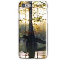 Cypress Trees basking in the Sunrise iPhone Case/Skin