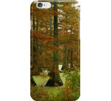 Autumn On Hills Lake  iPhone Case/Skin