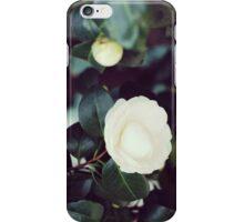 Madrid // Roses on Paseo del Prado No.2 iPhone Case/Skin