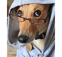 Funny Dog Wearing Glasses Photographic Print