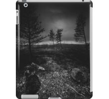 On the wrong side of the lake 10 iPad Case/Skin