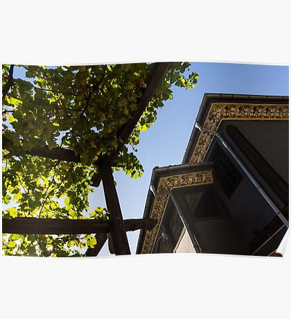 Summer Courtyard - Decorated Eaves and Grape Trellis in the Sunshine Poster