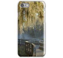 Spanish Moss Sunrise iPhone Case/Skin