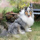 Sitting in the garden by koicharisma1