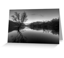 Tree Lake  Greeting Card