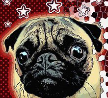 pug 15 by Adam Asar