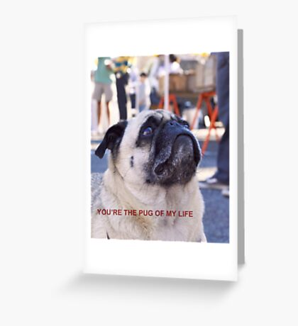 You're the Pug of my Life Greeting Card