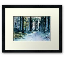 Forest Light Framed Print