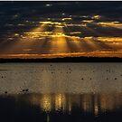 Cloudy sunset over Lake Myakka by Joe Saladino