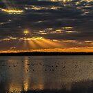 Dusk over Lake Myakka by Joe Saladino