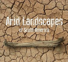 Arid Landscapes of South America by dare2go