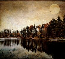 Mysterious Movement of the Seasons by PineSinger