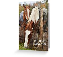 Of horse I love you Greeting Card
