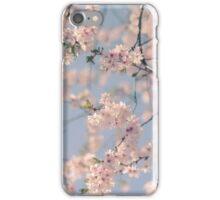 Retro Filter Cherry Blossom iPhone Case/Skin
