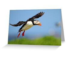 Prepare yourself......It looks like it could be a Puff landing!! Greeting Card