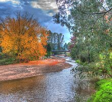 Autumn River by DavidsArt