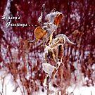 Milkweed Season's Greetings by WildThingPhotos