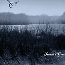 Blue Mist Season's Greetings by WildThingPhotos
