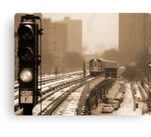 Snowy Day In Bronx  Canvas Print