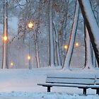 Winter walk in the park by Alberto  DeJesus