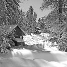 Baldy Cabins by Chet  King