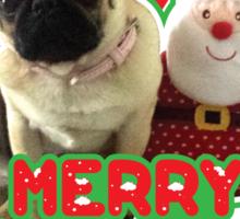 Merry Pug-mas Sticker