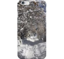 A  Winter Wonderland iPhone Case/Skin