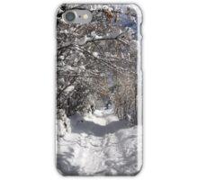 A  Winter Wonderland iPhone Case/Skin
